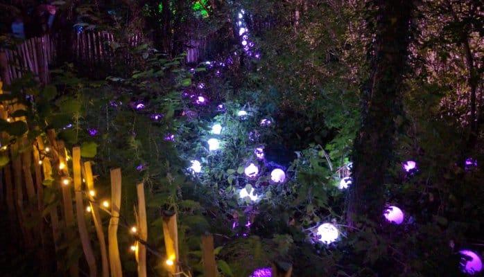 Custom LED Lighting & Effects - The Wood @ Glastonbury Festival 2016